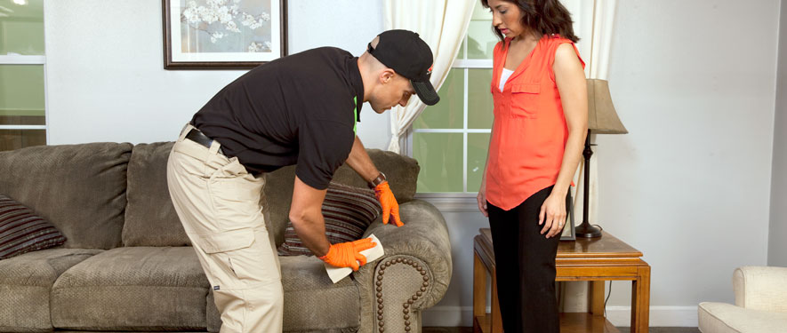 Dover, DE carpet upholstery cleaning