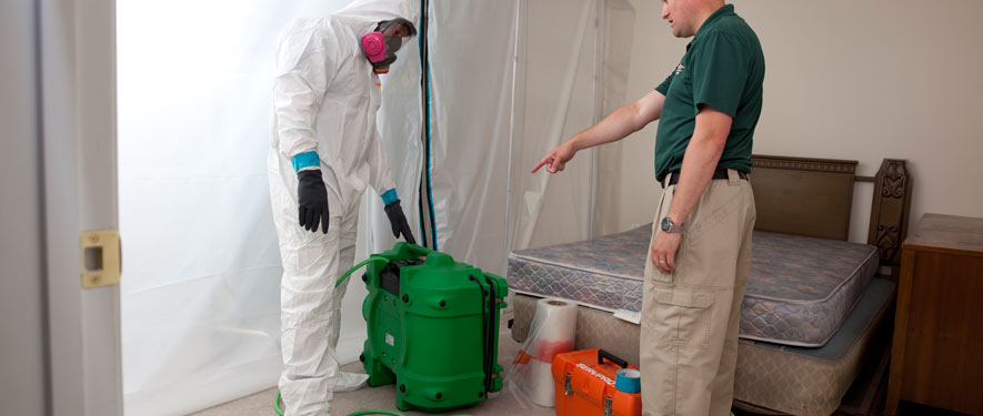 Dover, DE mold removal process
